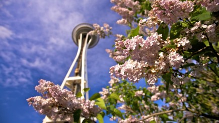 photo1_header-spring-space-needle